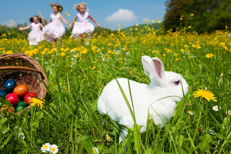 Ostern Frühlingsvollmond